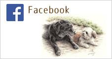 momoji facebook
